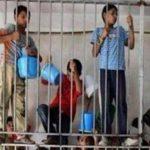 2016. Anno nero in Palestina. L'ennesimo.